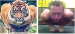 Tiger Strength Training